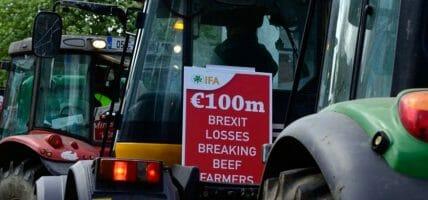 In Irlanda gli allevatori sono furosi con il govenro e con l'Unione Europea