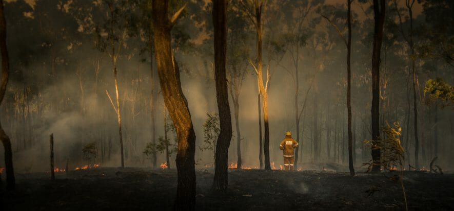 Australia, il fuoco frena la carne. Coronavirus aiuta il Brasile