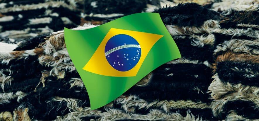 La pelle brasiliana scivola nel trimestre: export giù del 15,5%