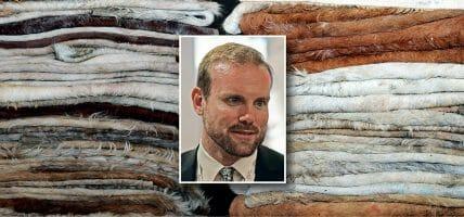 USA, le pelli in discarica per CRV mostrano il valore della concia