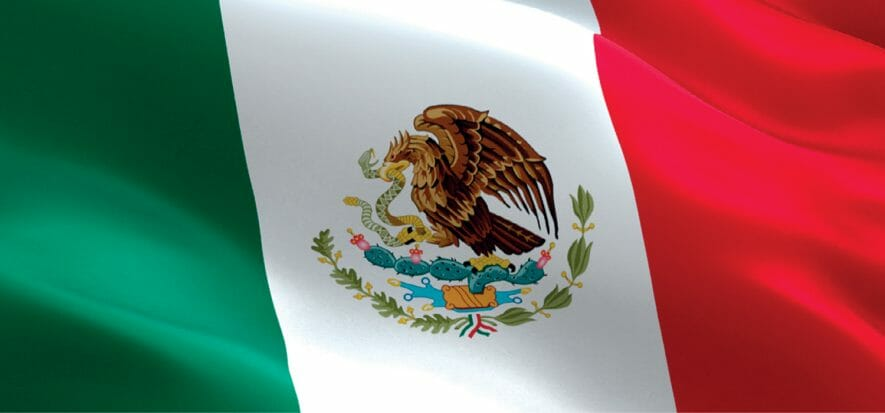 Mexico's footwear and leather are pessimistic: revenues -50%, production -80%