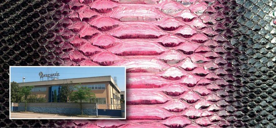 Sicurezza e serietà: Anaconda certificata ICEC anti-Covid