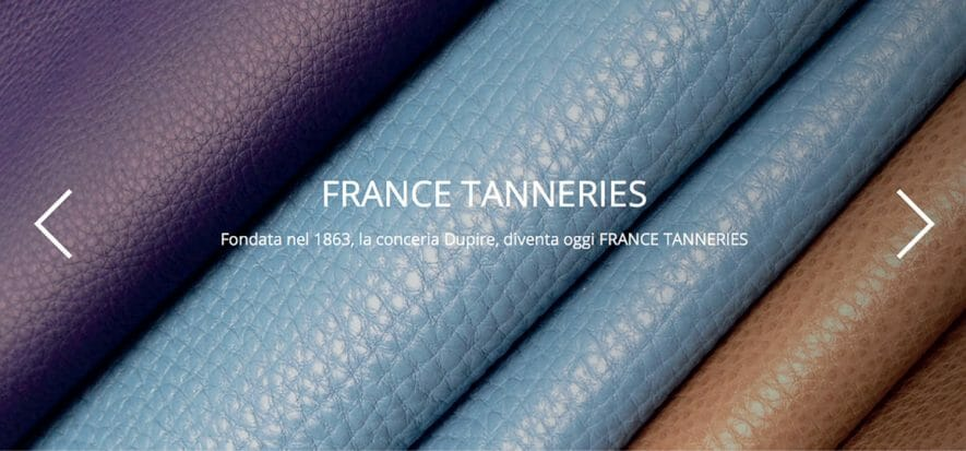 While waiting for bankruptcy proceedings, France Tanneries shut down