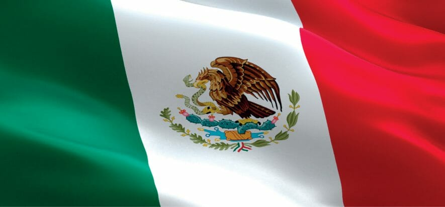 200 concerie al 30% della capacità: la pelle messicana riparte