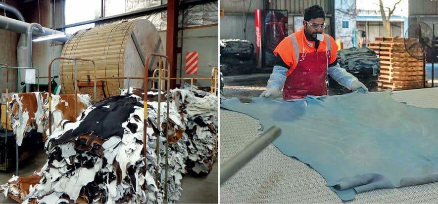 Greenlea Premier Meats, Wilson Hellaby e Glendenburg Holdings