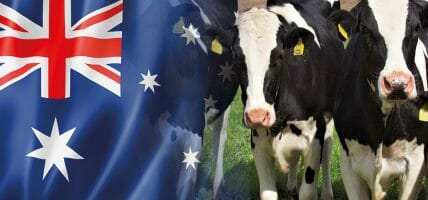 10 milioni di dollari: l'australiana Western Meat Packers investe