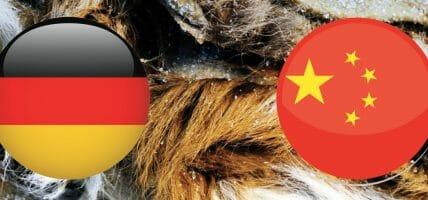 Chinese customs block imported salted leather from Germany