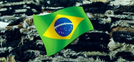 Brazil, the leather segment sees the light: export increases in November