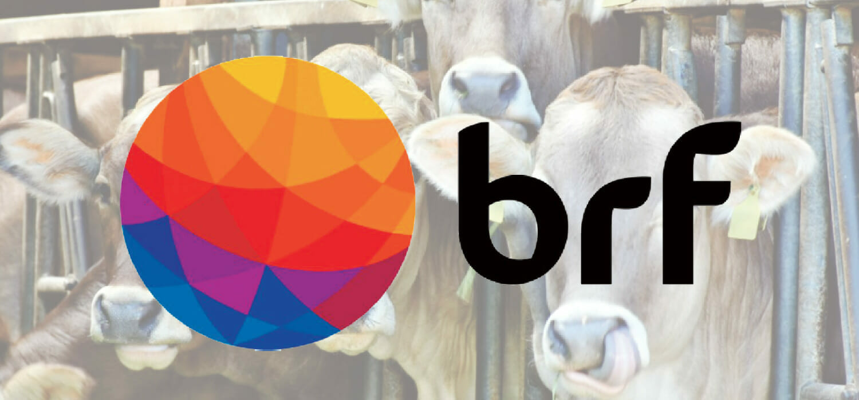 Brasile: 10 miliardi di maxi investimento per BRF