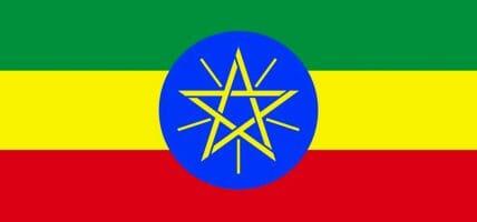 Etiopia, le concerie chiudono per la carenza di valuta estera