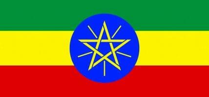 La pelle etiope punterebbe al miliardo, se avesse ciò che le serve