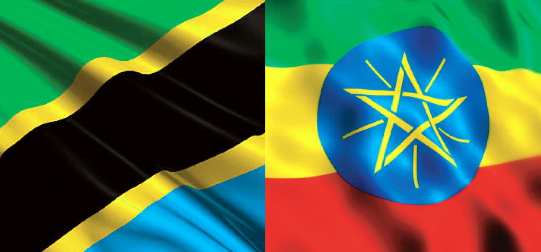 La pelle avvicina Etiopia e Tanzania, che parlano di partnership