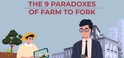 In un video i 9 paradossi che smontano i preconcetti sulla carne