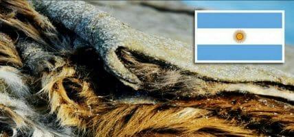 La concia argentina chiede lo stop all'export di materia prima