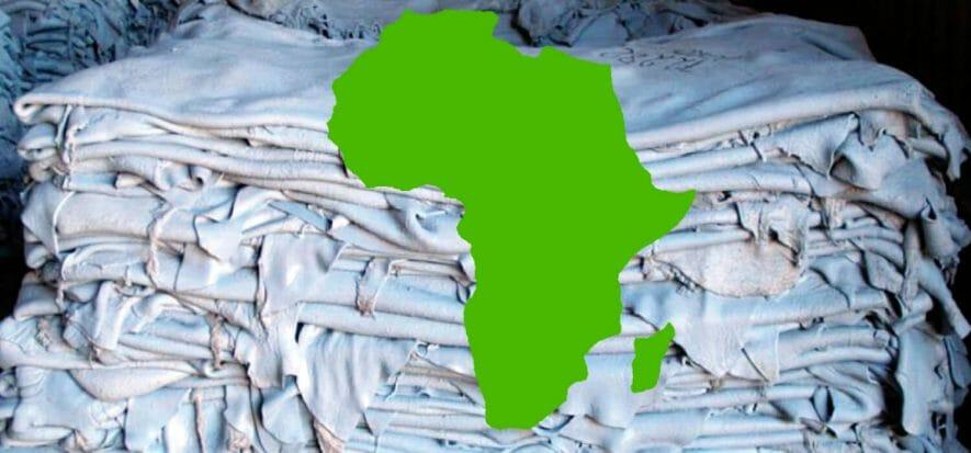 La pelle africana e il suo futuro, tra Nigeria e Zimbabwe