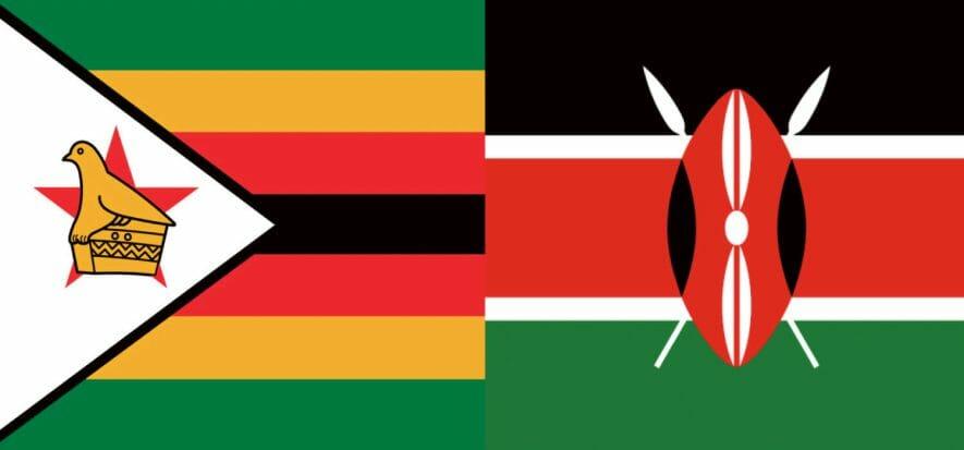 African leather: Zimbabwe looks forward, Kenya has concerns