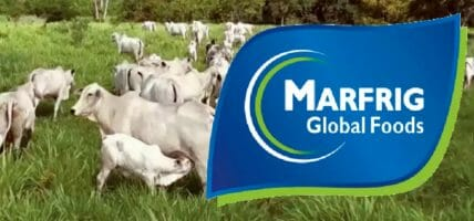 Marfrig acquires 24.23% of BRF (investing, it is said, 800 million dollars)