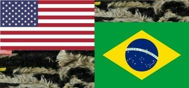 Il trimestre della pelle USA, il buon aprile di quella brasiliana