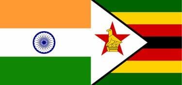 I tentativi di rilancio della concia di Zimbabwe e India