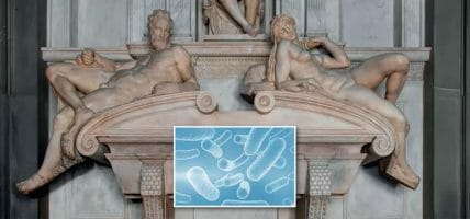 The Medici Chapels and the bacterium useful for art - Photogallery