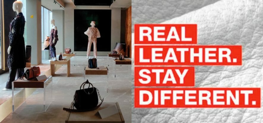 Click and vote - it's the decisive moment of the World Leather Contest