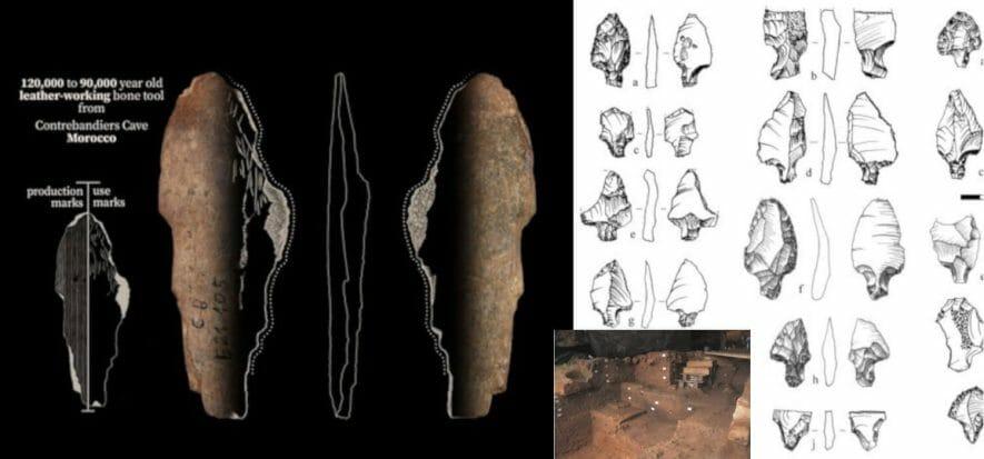 Due scavi riportano alla luce la concia agli albori dell'umanità